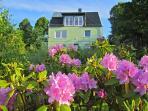 Das Gruene Haus - From Garden
