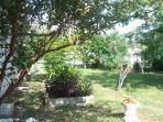 Outside Yard