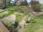 Granite rock garden.