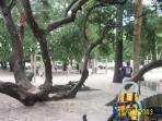unique children playground