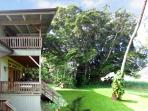 Tropical Paradise at the Oceanview Banyan House with wraparound lanais