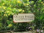 Beautiful Condo/Garden Setting/ Close to the Beach