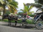 Transportation within Playa Dorada Available for Nominal Charge