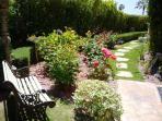 Tranquil Rose Garden