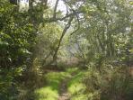 Hike the many trails in Malibu