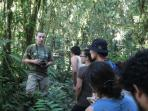 A biological guided tour through the forest