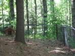 Completely fenced/gated back yard for your pet