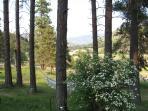 natural setting