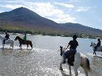 Riding Gypsies on Clew Bay with Croagh Patrick and Cottage in background