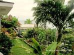Garden od Boracay Island Villa