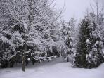 Domaine 4 Saisons - Belle journée d'hivers