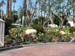 beautiful entrance flower beds to welcome you.