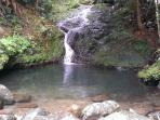On the trail of Toro Negro natural pool