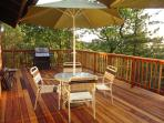 New Redwood Deck with Propane Grill, Outdoor Patio Furniture, VIEWS