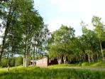 Stora Björnstugan - Big Bear Cabin