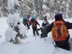 snow walk apart-franziska.at
