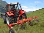 Charlys tractor apart-franziska.at