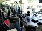 Commercial and well equipped workout room with a wall of windows overlooking greenery