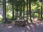 Suite Paradise Grounds: Guest picnic table