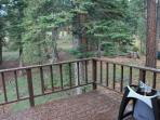 back deck with gas BBQ overlooking the forest - no home behind you!