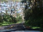 The Red Road of Puna