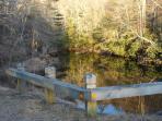 River trail...popular spot for fishing