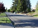 Quiet Neighborhood!