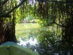 Lagune alentours