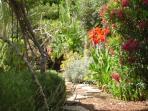 garden impresssions