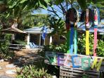 Studio located 50 yards from ocean, Unit 9
