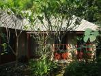 Bungalow, garden view