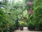 Pachamama Garden