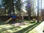 Play structure in the backyard