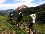 The world-famous 401 mountain biking trail