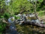 the fresh unspoiled stream flowing nearby