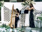 Serenades during a wedding ceremony