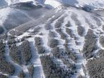 Make your vacation  Special!! Stay at Breckenridges Premier Grand Timber Ski In Ski Out Resort