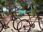 Two new bikes are available for exclusive use of our guests allowing you to explore Cayman Kai.