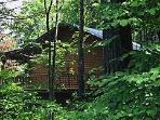 Secluded Mountain Top Cabin 1: Enchanted Forest