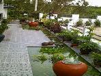 Ornamental Fish Pond