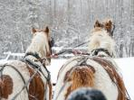 If you don't ski/snowboard, try a sleigh ride!