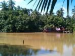 The river alongside the house.