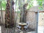 Shady garden corner