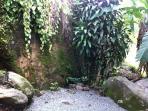 Pura Vida Rock Garden