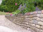 The artistic garden shot showing the splendor of my gardening abilities.