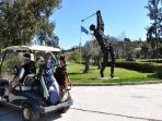 Try out one of the many excellent nearby Golf Courses another day or ....