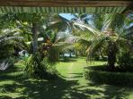 vue depuis la terrasse sur le parc à tortues et la maison des lémuriens