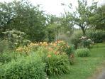 The main garden in July