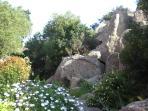 Garden near the entrance