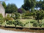 Garden III